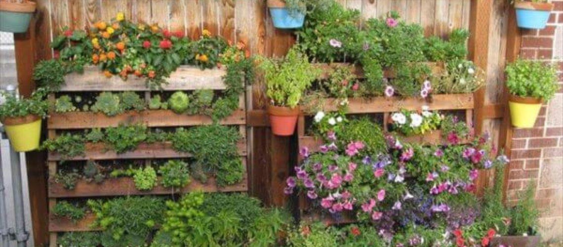 Vertical pallet-garden